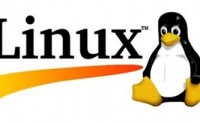 Linux 查看服务器开放的端口号